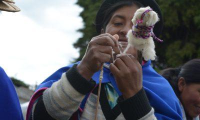 Comunidades indigenas subsidios