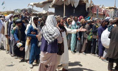 afganistan futuro talibanes