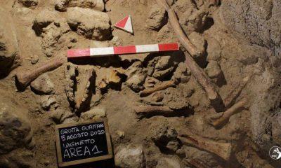 Restos fósiles neandertales