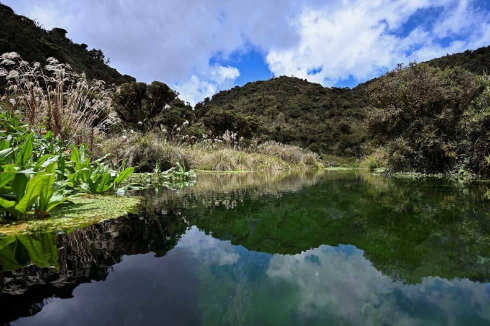 Imagen de un lago en el Parque Nacional Natural Puracé