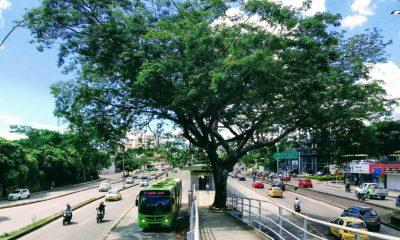 metrolinea subsidio tarifa