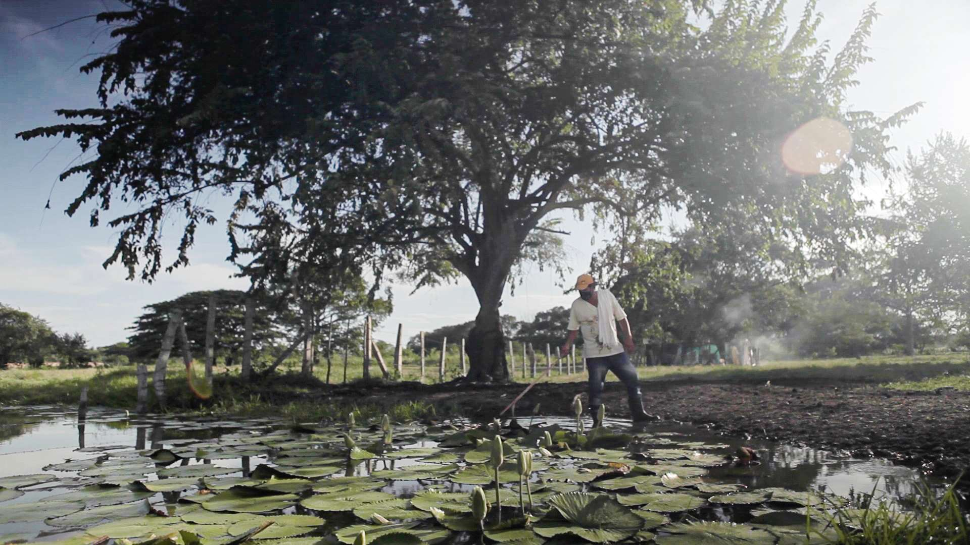 Paisaje Sostenible Colombia
