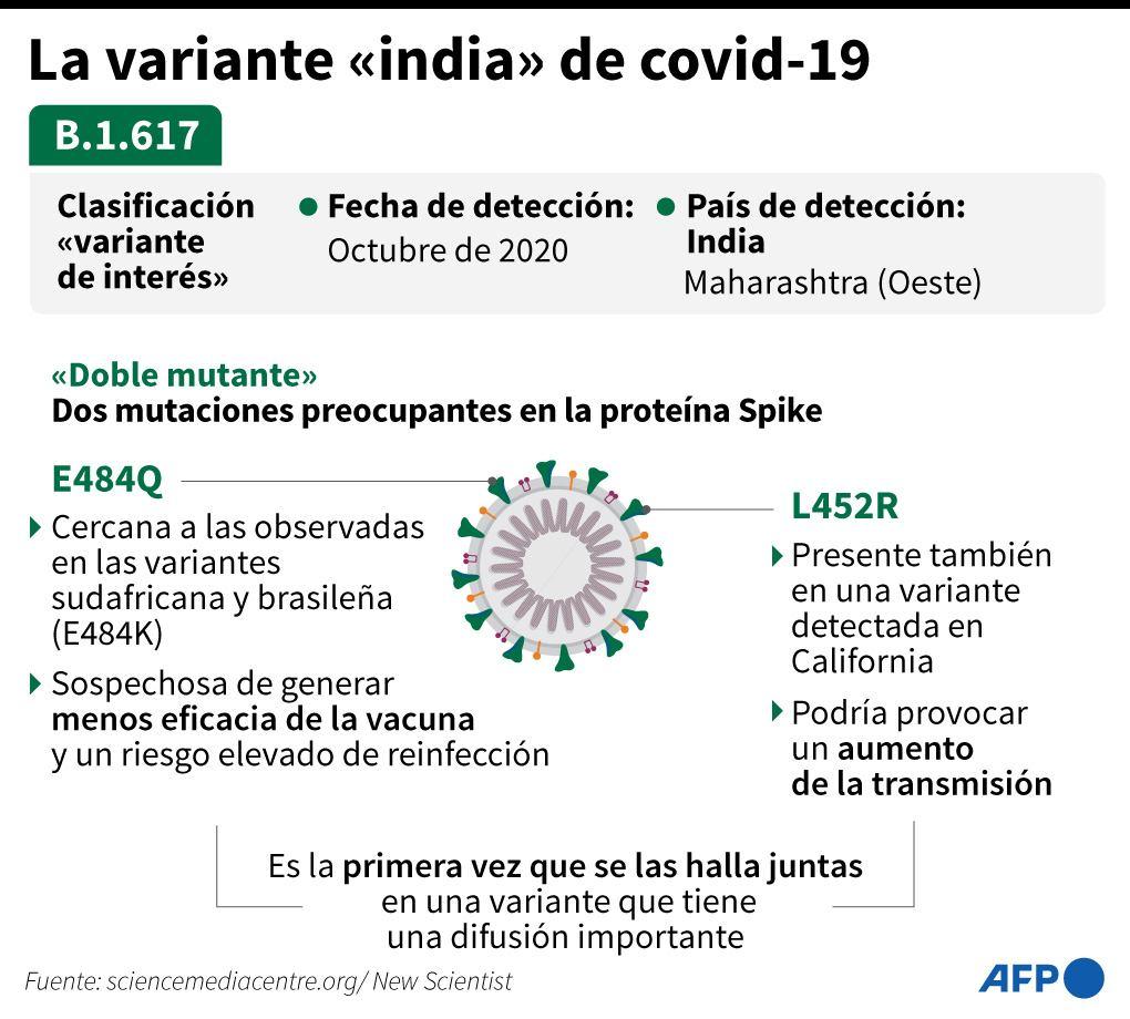 Así es la variante india del coronavirus. Gráfico: Valentina BRESCHI, John SAEKI / AFP