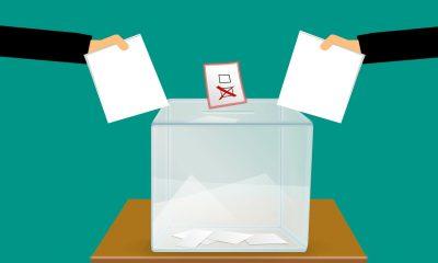 Consejos-de-juventud-elecciones